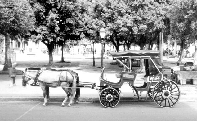 In Granada horse-drawn carriages are still used for transportation